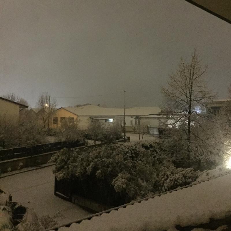 Nevica