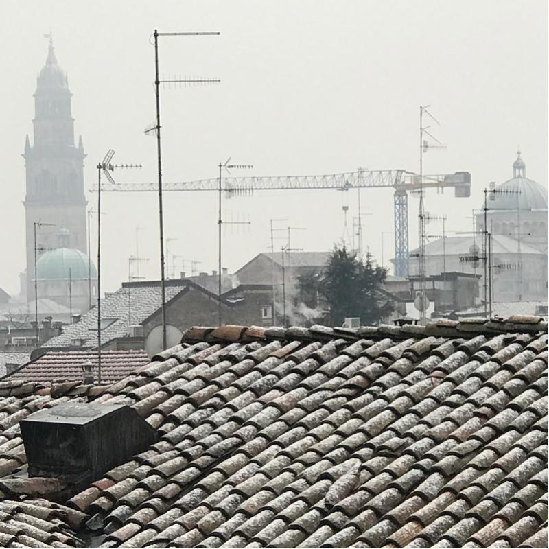Fotosegnalazione di Parma verdi