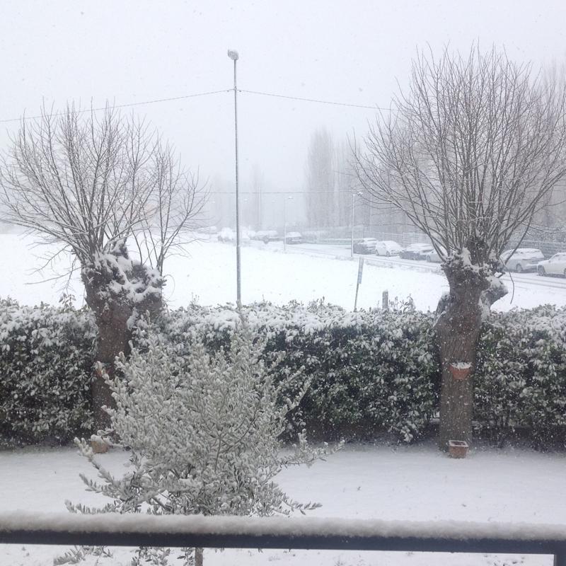 Neve a casarola