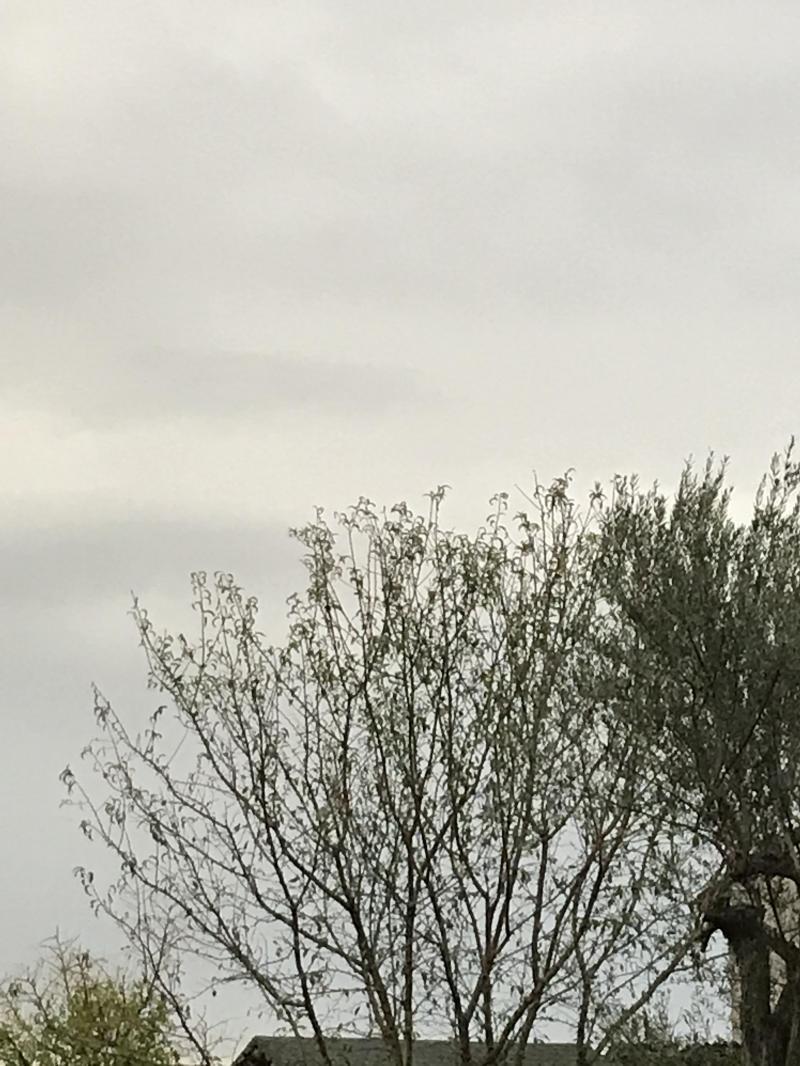 Pioggia e vento