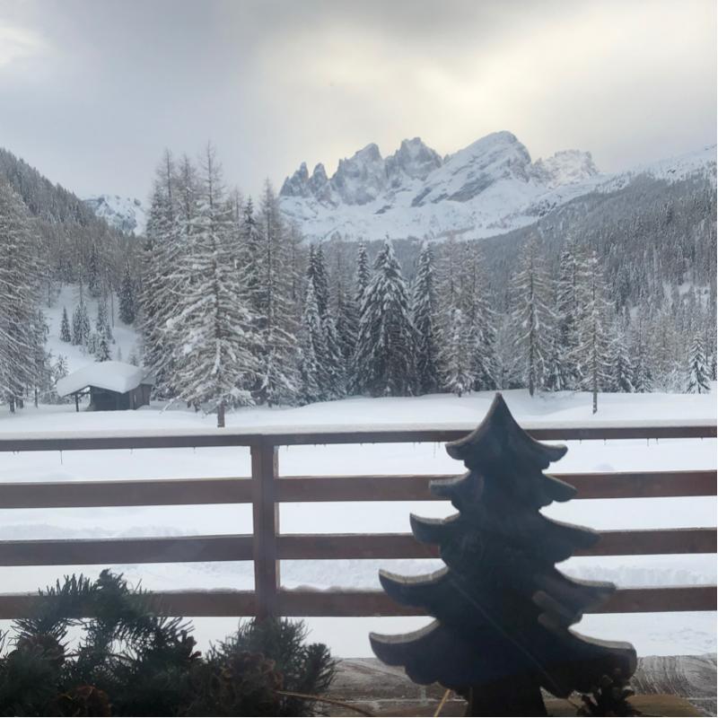 Finestra sulle pale di san martino dal rifugio flora alpina