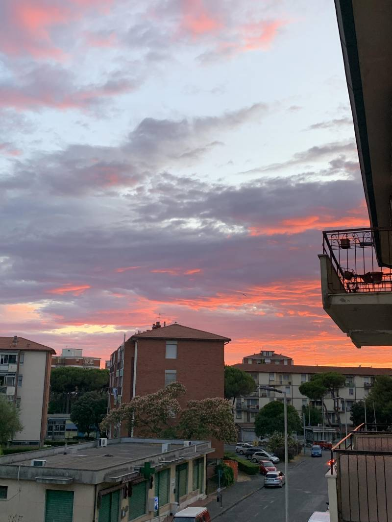 Livorno unica