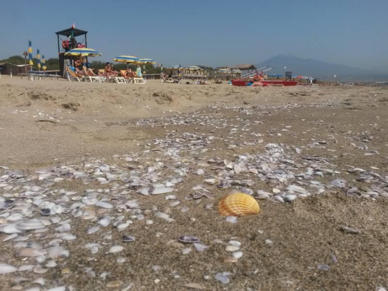 playa catania