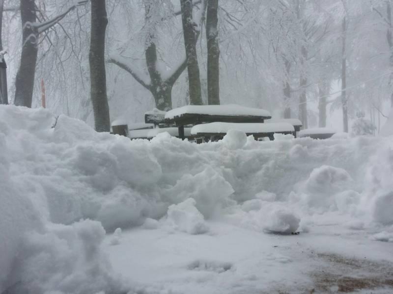 nevica 22 gennaio 2015