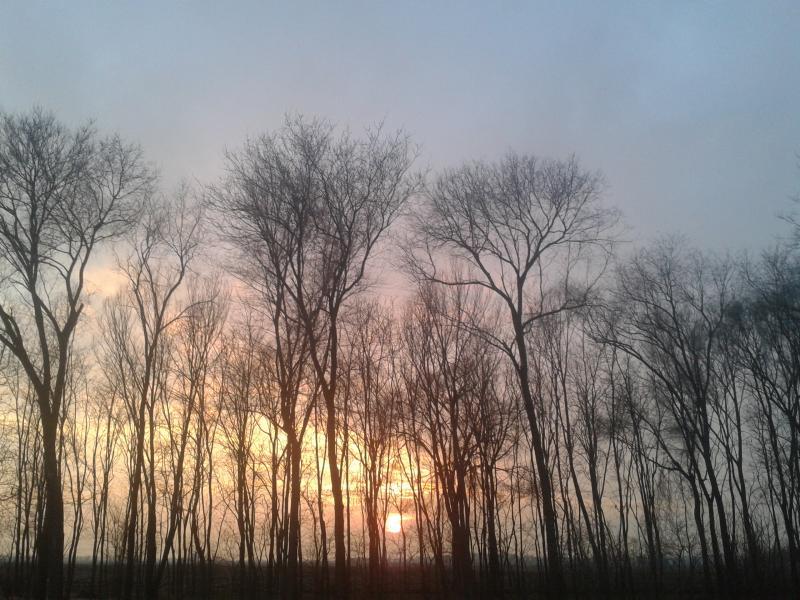 tramonto salmastro