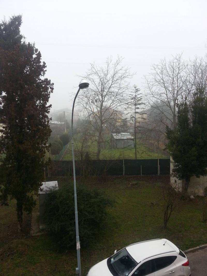 Ancora nebbia