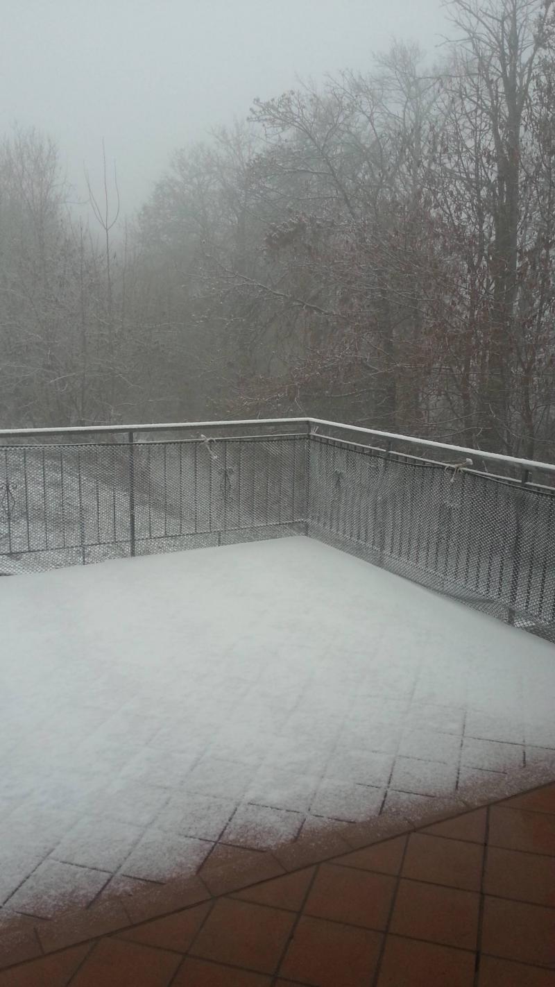 nevicata 3-1-2016