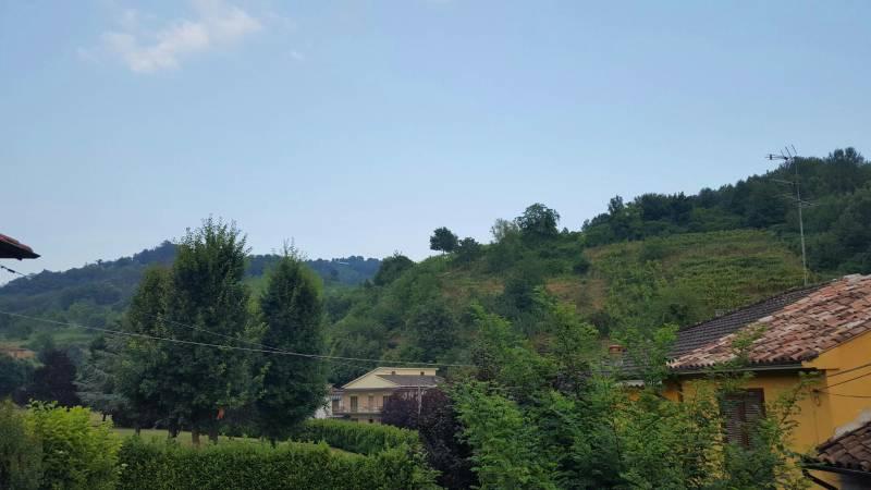 colline di Broni