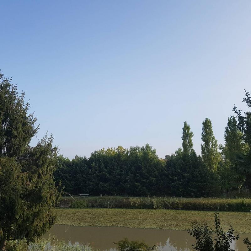 Fotosegnalazione di Portomaggiore