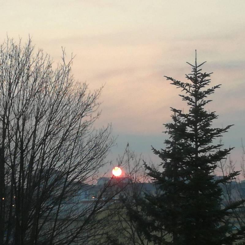 Fotosegnalazione di Novi ligure