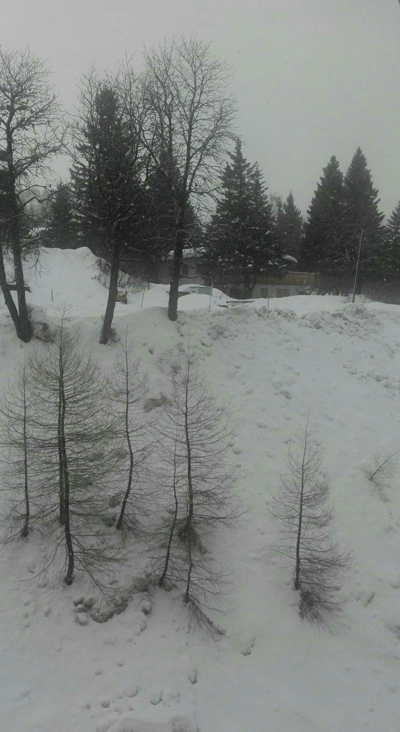 12032018 Neve fitta dal pomeriggio di ieri