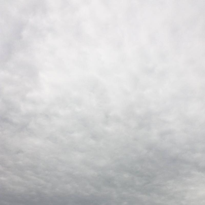 Nuvoloso con afa