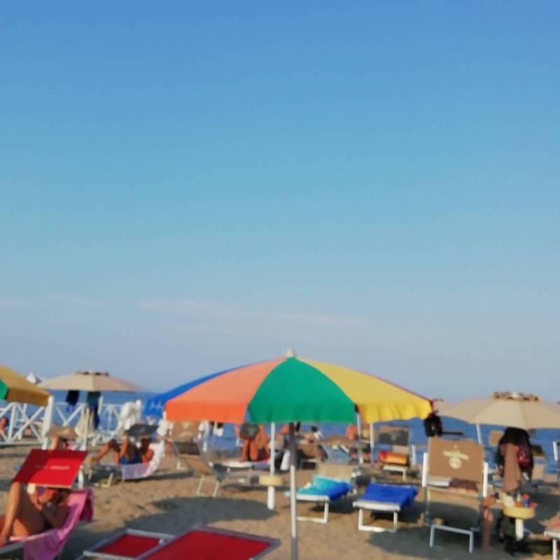 Fotosegnalazione di Rosolina mare