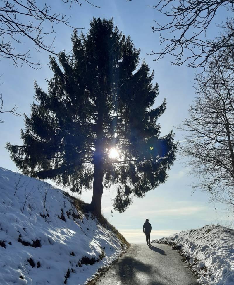 Passeggiata d'inverno