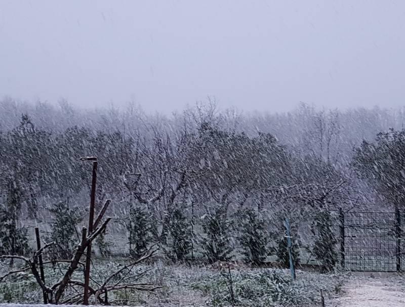 Prima neve della stagione