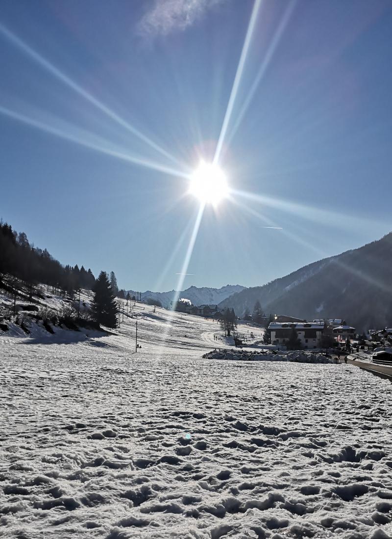 Cogolo neve