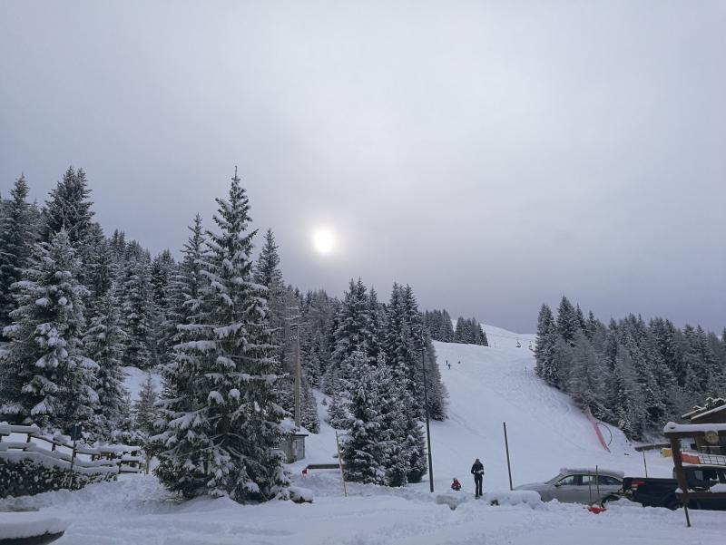 Nevicata 18.01.20