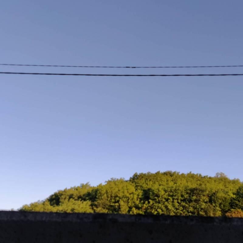 Fotosegnalazione di Gorizia