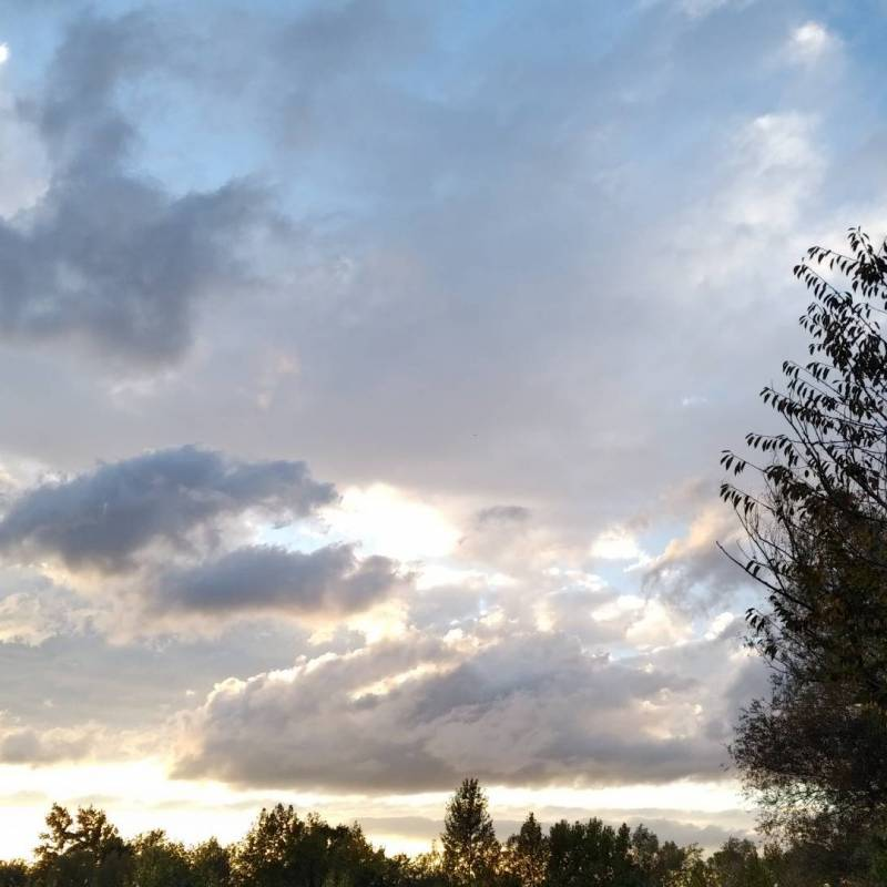 Fotosegnalazione di Martellago