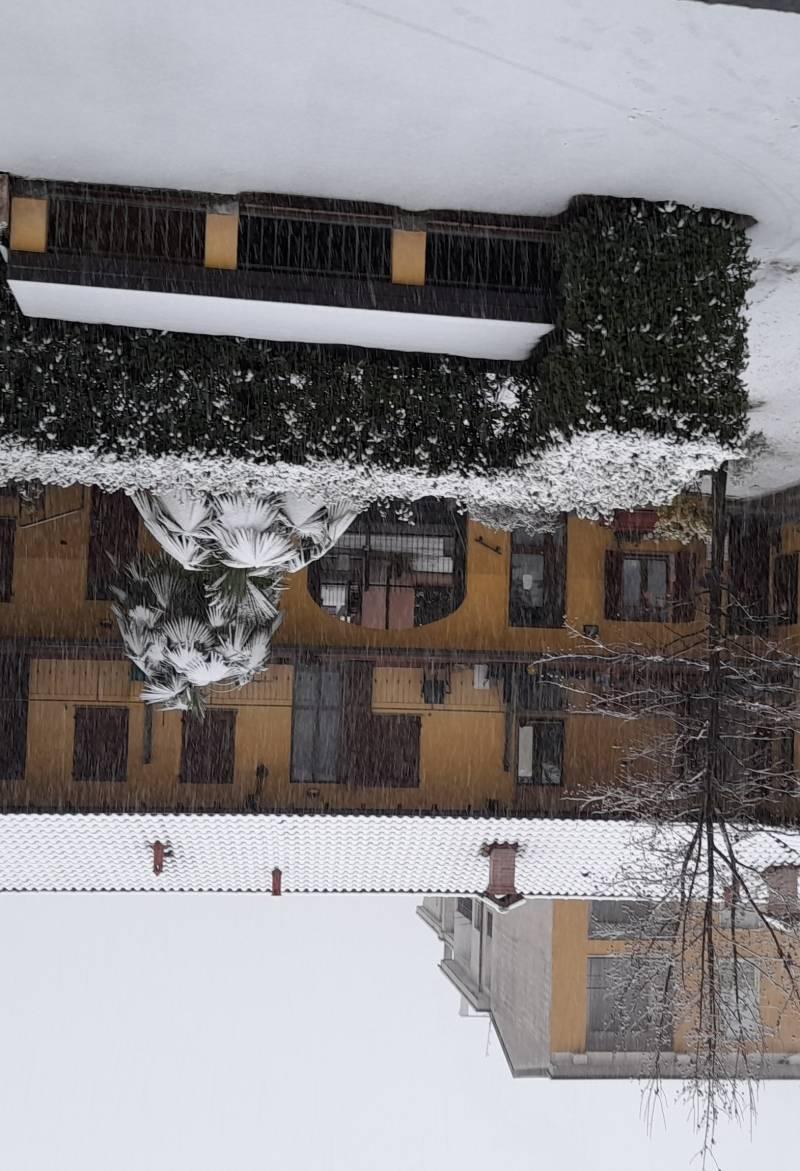 Giornata di neve