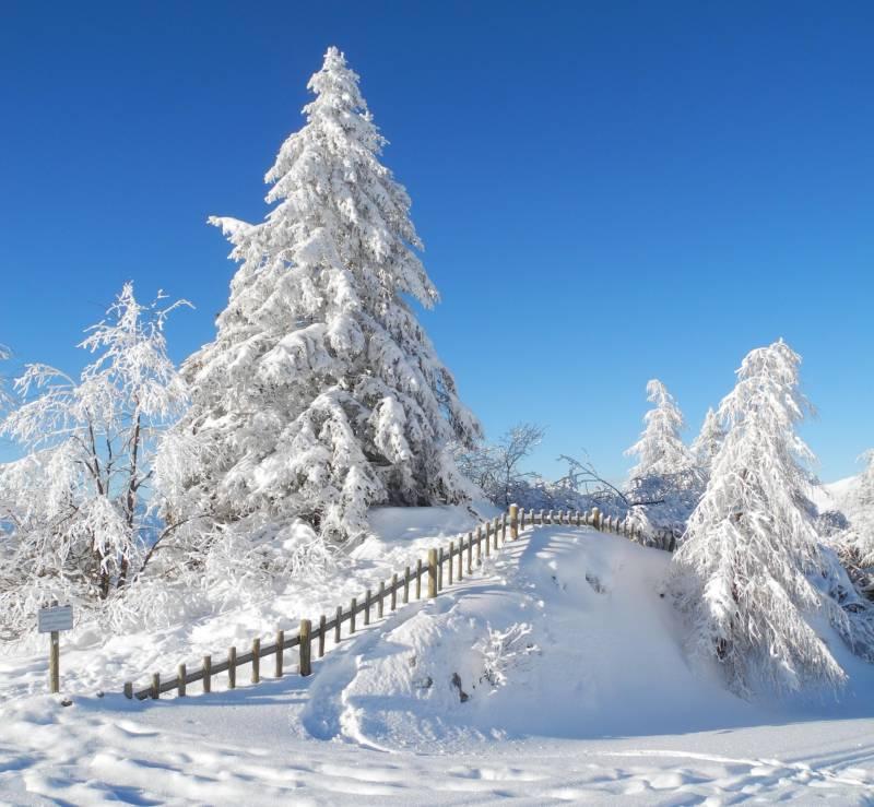 Che bella nevicata