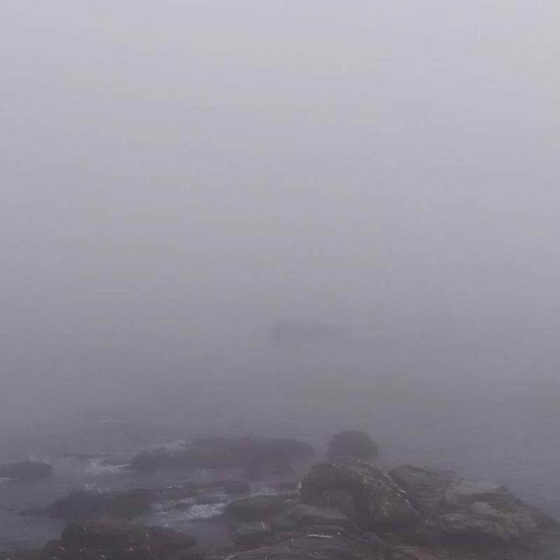 Nebbia 24 febbraio 2021