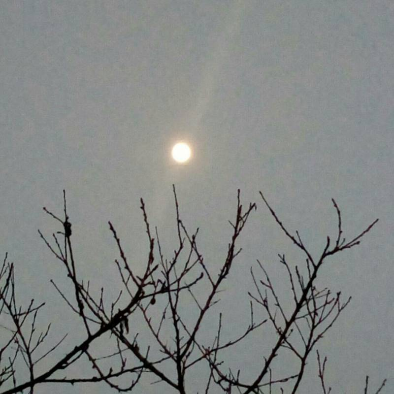 Luna ore 1825 Lissone