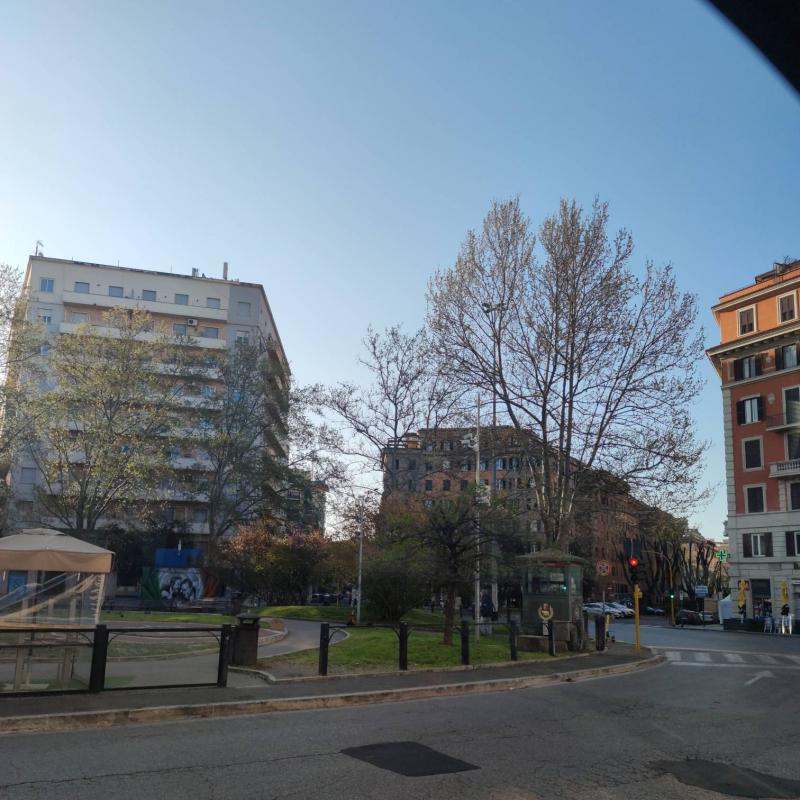 Piazza bologna by covid 19