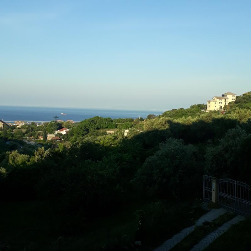 Genova san teodoro