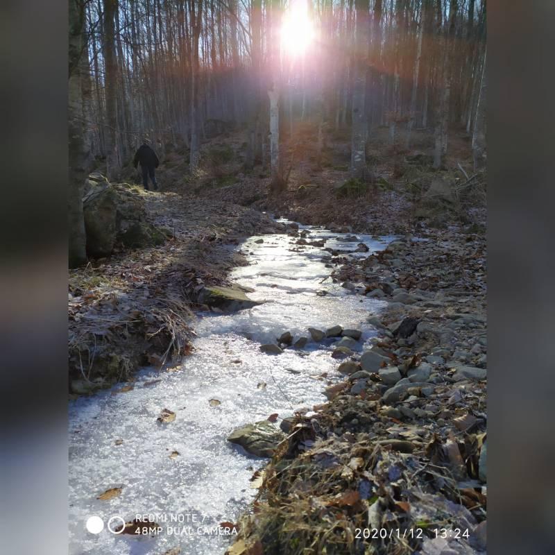Cerreto laghi bosco