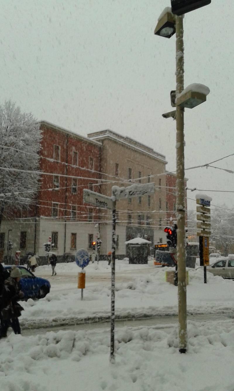 Aipo sotto la neve